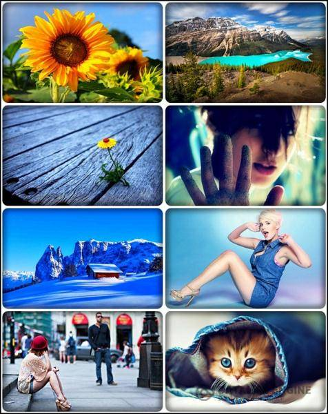 Wallpapers Mixed Pack 66